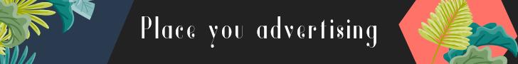 – Advertisement –